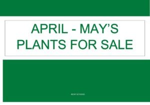 April-May Cover Plant Sales